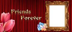 Friends 16