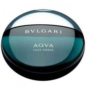 bvlgari aqua pour homme 100ml premium perfume