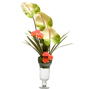 carnations anthuriums vase arrangement