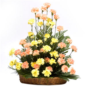 carnations basket golden times