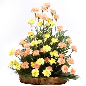 carnations basket golden times