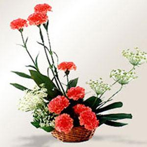 carnations basket of love
