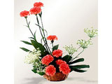 A Basket of Love, Carnations