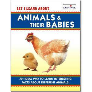 creative lets learn about animals and their babies board book