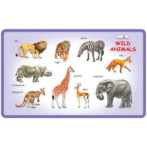 creative play and learn wild animals