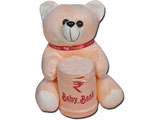 Cute Teddy Piggy Bank