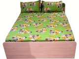 Double Bed Sheet Chhota Bheem Green Meadows Gree