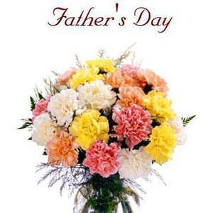 fathers day 12 carnations