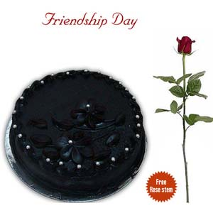 friendship day fnp chocolaty friends exfd41