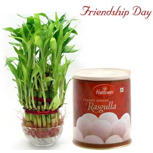 friendship day fnp dreamland exfd43