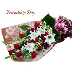 friendship day fnp fairy exfd14