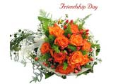 Friendship Day Tender