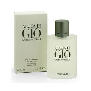 giorgio armani acqua di gio 100ml premium perfume