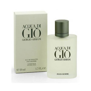 giorgio armani acqua di gio 200ml premium perfume