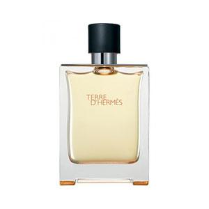 hermes terre dhermes 100ml premium perfume