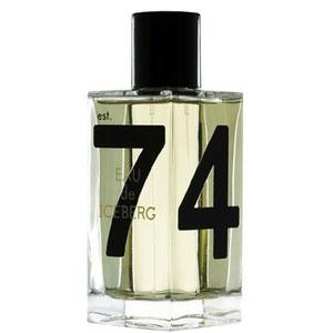 iceberg eau de iceberg pour homme 75ml premium perfume