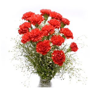 luxury red carnations bunch
