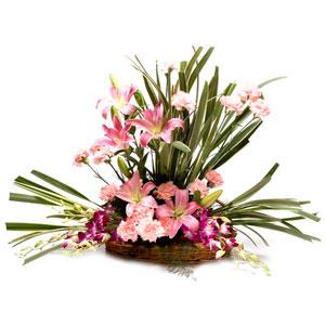 mix exotic flowers basket modern trance