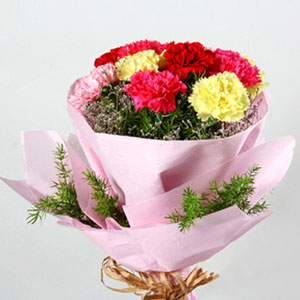 mixed color carnations bouquet colors of live