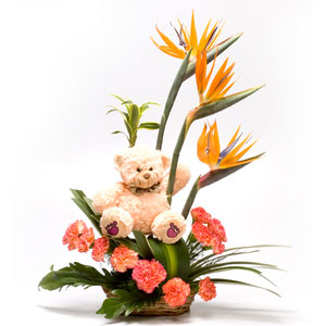 orange carnations basket freesia zest