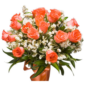 orange roses hugs and kisses