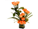 Daisy Crazy, Orange Roses in Vase