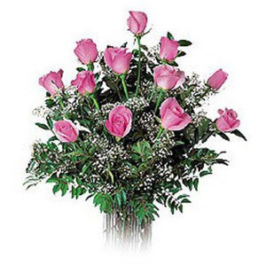 pink roses dozen in cellophane expressions