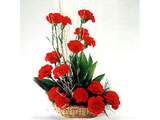 Romantic Affair, Red Carnations