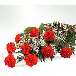 red carnations bunch full of love