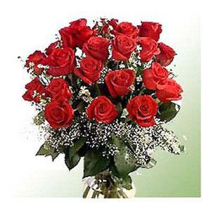 red roses bunch romantic whisper