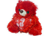 Red Teddy with Heart