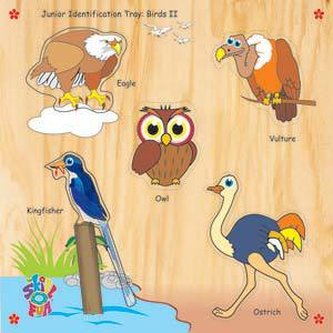 skillofun junior identification tray birds ii eagle
