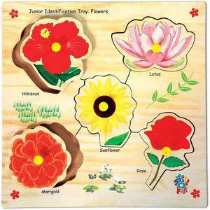 skillofun junior identification tray flowers