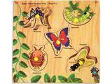 Skillofun Junior Identification Tray - Insects- I (Mosquito)