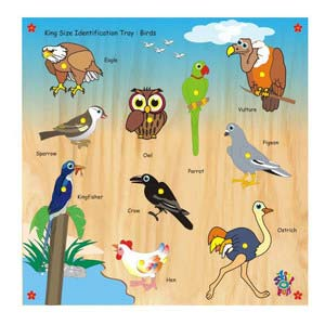 skillofun king size identification tray birds