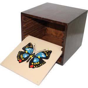 skillofun montessori botany puzzle 6 no with cabinet