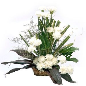 white carnations basket cool classic