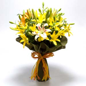 yellow orange pink asiatic lilies bunch midnight
