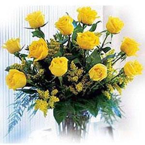 yellow roses dozen in cellophane sentiments